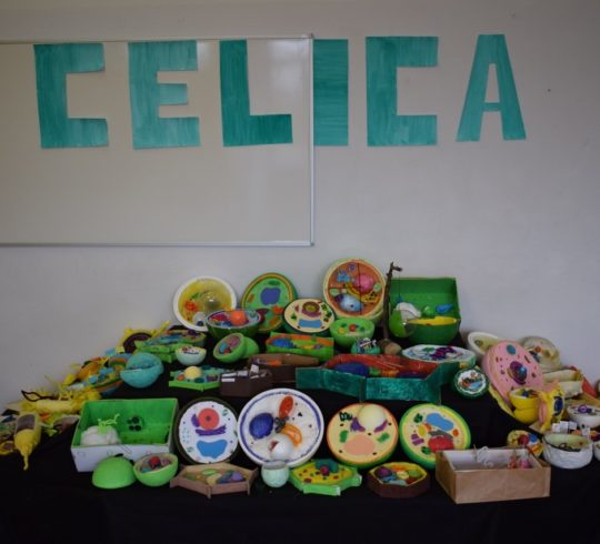 Celica2019_13